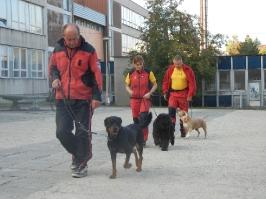 chůze u nohy - Vlasta se Sašou, Bára s Annie a Ruda s Basty